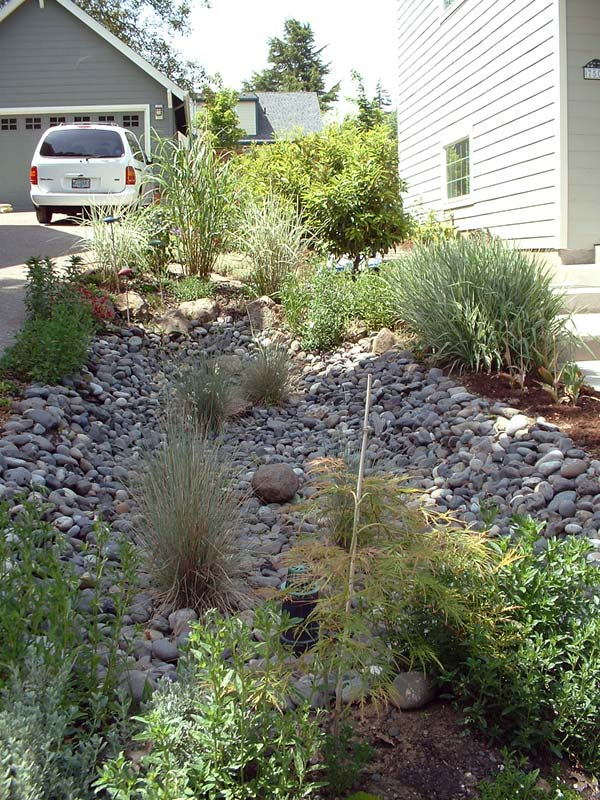 Trees And Stormwater Runoff Center For Watershed Protection